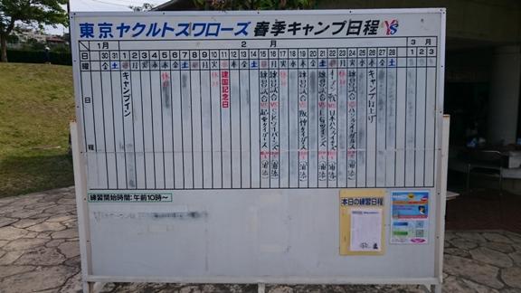 tokyo_yakult_swallows_okinawa_camp_2015_001