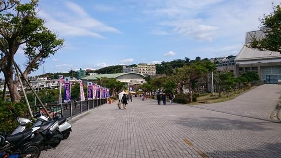 tokyo_yakult_swallows_okinawa_camp_2015_002